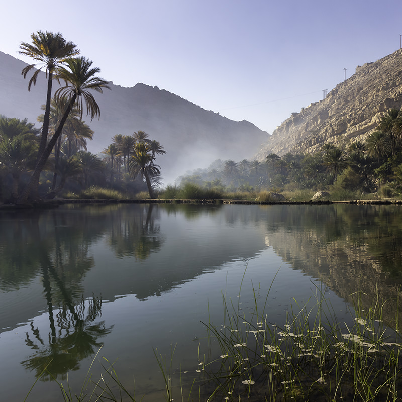 The main pool of Wadi Bani Khalid, perfectly still and reflecting palm trees and low mountains in the early morning light