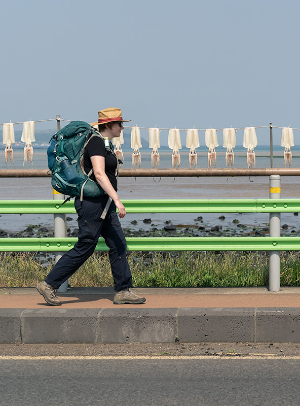 A profile shot of a woman wearing hiking clothes and a backpack walking along a pavement with squid strung up to dry