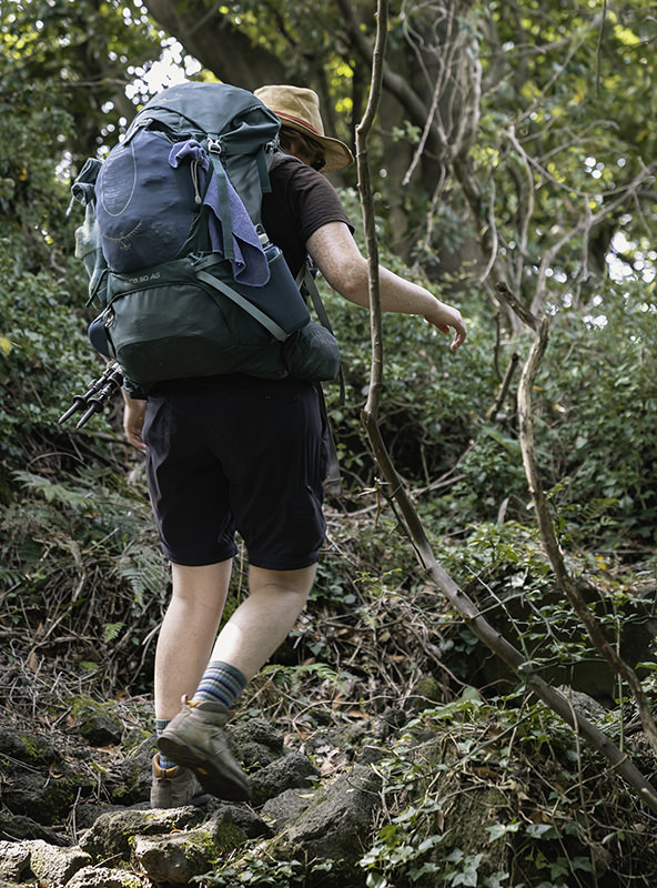A hiker with a backpack walking through a tangled wooded path on Jeju Olle Trail Route 14