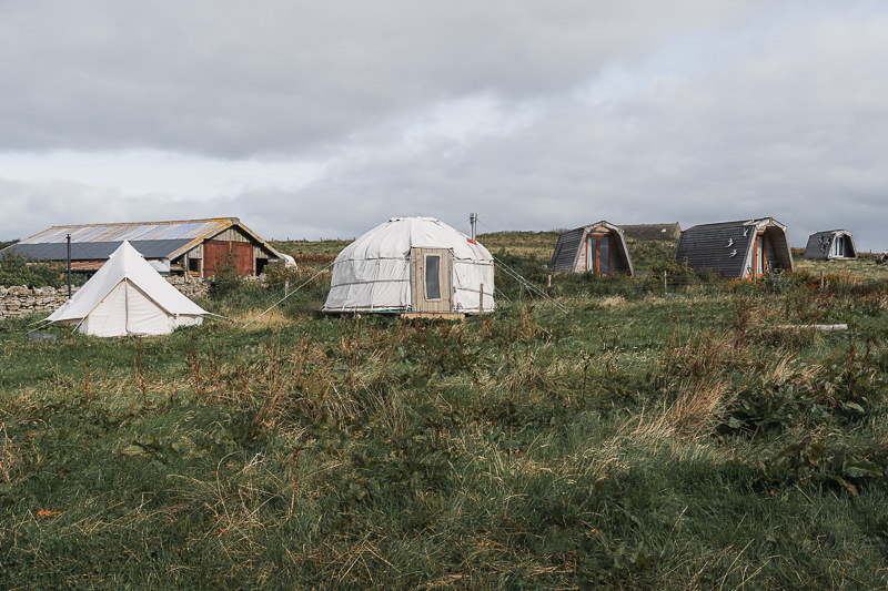 A tent, yurt, and camping pods in the long grass at Wheems Organic Farm in the Orkney Islands