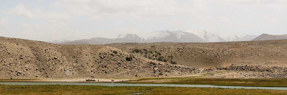 Camels resting on the bank of the Pamir River in Afghanistan, seen from Tajikistan on a Pamir Highway Road Trip