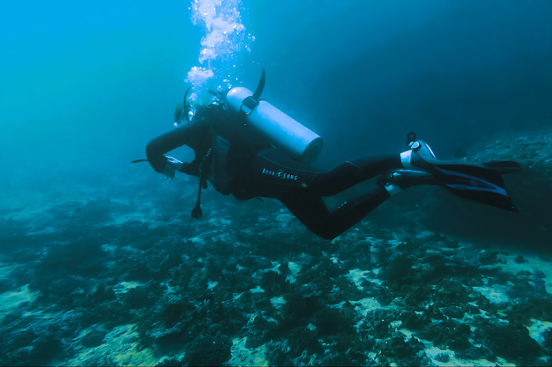 Keeping an eye on the dive computer while scuba diving in Oman